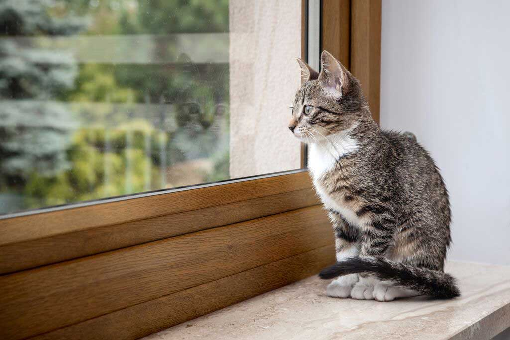 double glazing cost royal leamington spa